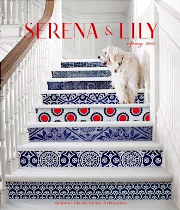 Stair Riser Magazine Cover
